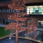 LHU Health Science Building Water Feature